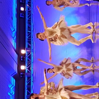 Royal Winnipeg Ballet Gala: Havana Nights, Winnipeg Manitoba, RBC Convention Centre